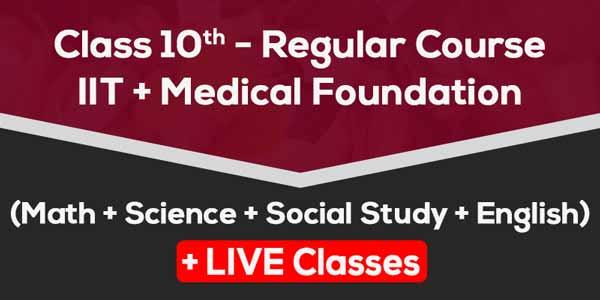Class 10 - Regular Course + IIT & Medical Foundation